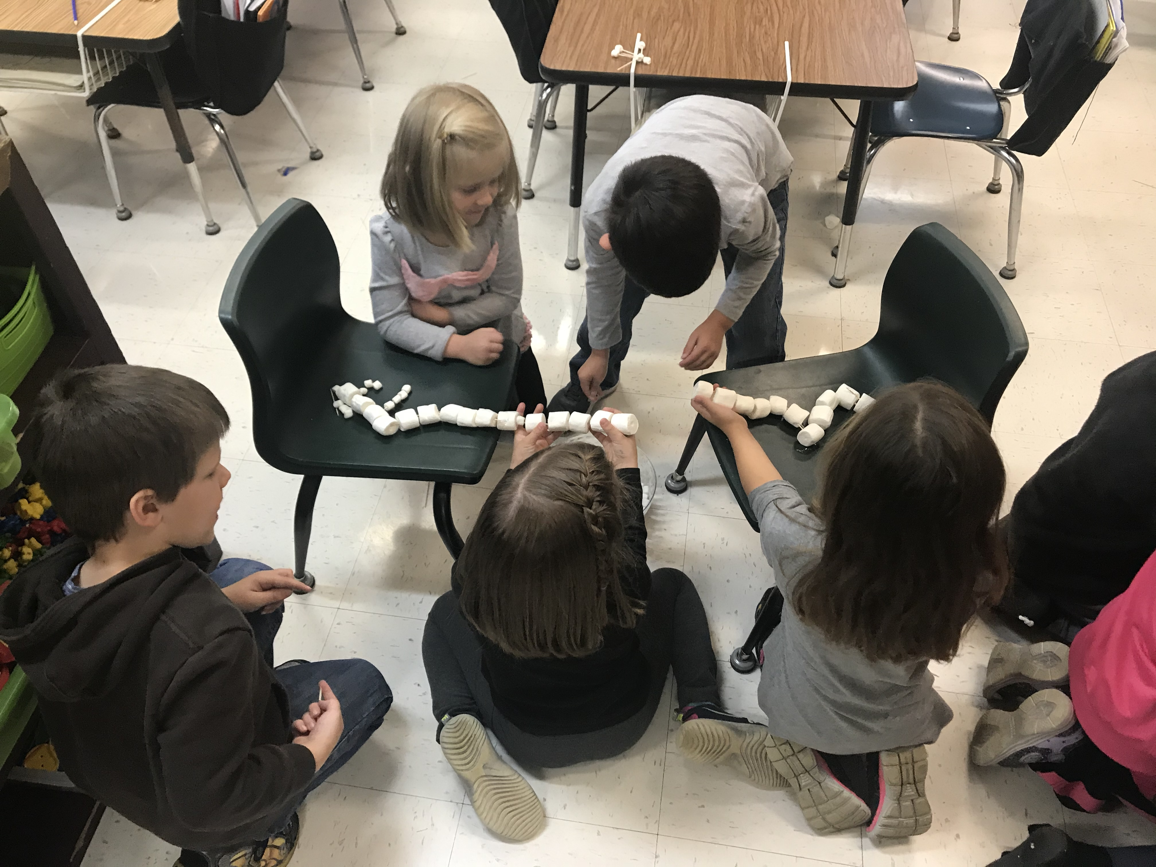 Marshmallow Bridges With Mrs. Gilbert's Class